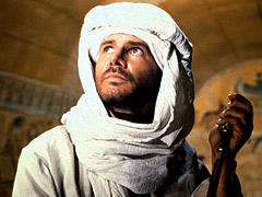 Harrison Ford, Raiders of the Lost Ark