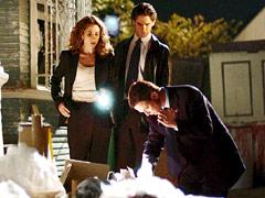 Gary Sinise, CSI: NY, ...