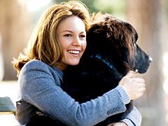 Diane Lane, Must Love Dogs