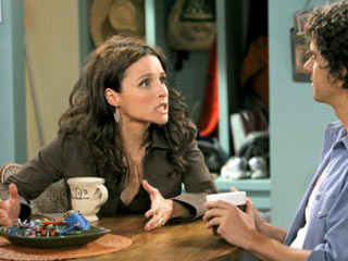 Julia Louis-Dreyfus, The New Adventures of Old Christine