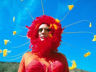 Terence Stamp, The Adventures of Priscilla, Queen of the Desert