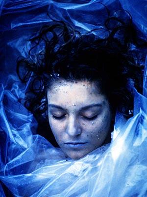 Sheryl Lee, Twin Peaks