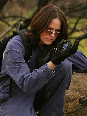 Jorja Fox, CSI: Crime Scene Investigation