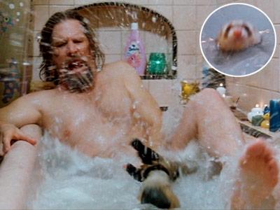 Jeff Bridges, The Big Lebowski
