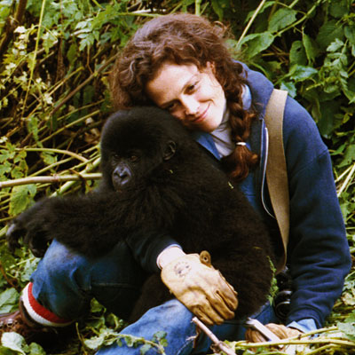 Sigourney Weaver | As an American zoologist who studied Rwandan gorillas in their natural habitat for nearly two decades, Fossey captured the world's attention while fighting against the…