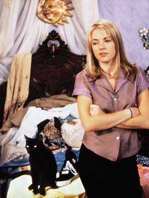 Sabrina the Teenage Witch If a pet is going to talk, it better be a wisecracking, smart-aleck cat like Salem, the feline friend of Sabrina…
