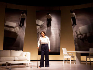 Anna Deavere Smith, Let Me Down Easy