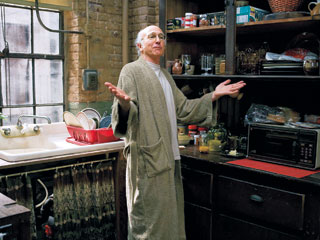Larry David, Whatever Works