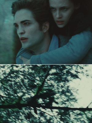 Twilight | I hated the movie Twilight — terrible acting, terrible 'special' effects, terrible writing, etc. I wanted them to make Twilight into a movie when I…