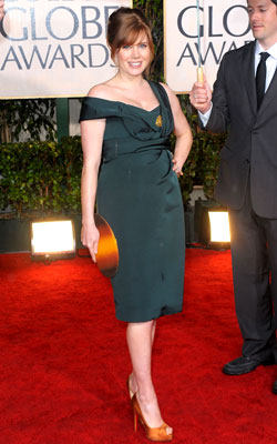 Golden Globe Awards 2010   AMY ADAMS What do you think of this look? ( polls )