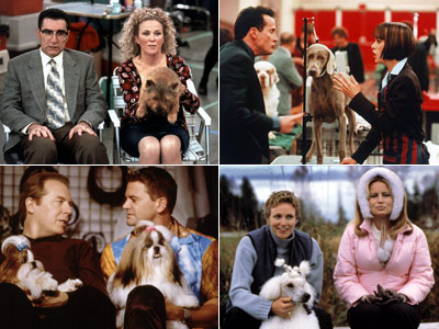 Best in Show, Michael Hitchcock, ... | The entire canine cast of Best in Show The dog-show contenders — a Norwich Terrier, a Weimaraner, a Bloodhound, a standard poodle, and a Shih…