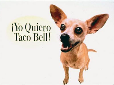 GIDGET (Chihuahua) Taco Bell ads After seeing those ads, who didn't immediately quiero one of those adorable puppies? And a chalupa, too, for that matter.…