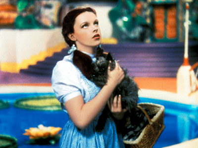 TOTO (Cairn Terrier) The Wizard of Oz Toto hopped into that basket — and the handbag dog was born. You're welcome, Paris.