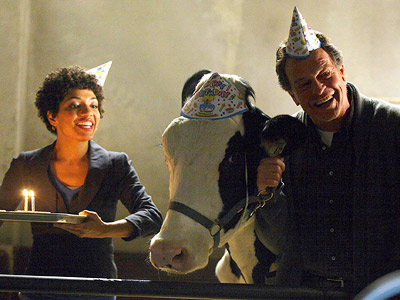 Fringe, John Noble   The cow is named Gene. Walter requested a cow for ''experimentation'' purposes, but has ended up thinking Gene adds a nice calming element to the…