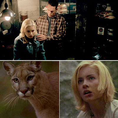 KIM BAUER'S DAY OFF Day 2 So let's recall what happens to Kim (Elisha Cuthbert) in Day 2 when she's away from Daddy, shall we?…