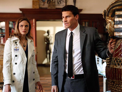 Bones, Emily Deschanel   ''The Egyptian room backgrounds are all VFX.'' Fine. Just tell us the upper body on T.J. Thyne during Hodgins' trysts there with Angela was real.