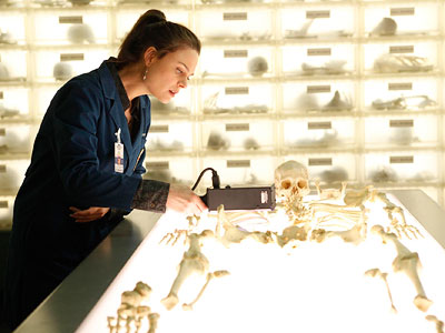 Bones, Emily Deschanel   ''There are 304 bone boxes in the Bone room.'' By comparison, there are only 72 bone boxes in Angela's office.