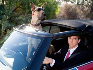 Marmaduke | WAH WAH Lee Pace doesn't look too happy about Marmaduke