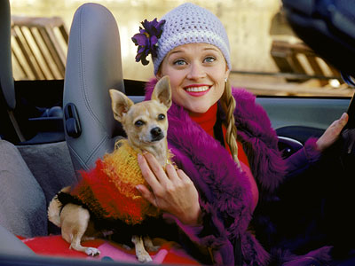 Legally Blonde, Reese Witherspoon | The Legally Blonde movies Elle Woods knows that cute Chihuahuas are the perfect accessory. And even though Bruiser doesn't say a word, he is clearly…
