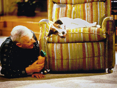 John Mahoney, Frasier | Frasier Remember how popular Jack Russell terriers were circa 1993? You can thank this cute little fella for igniting that craze. Also awesome about Eddie:…