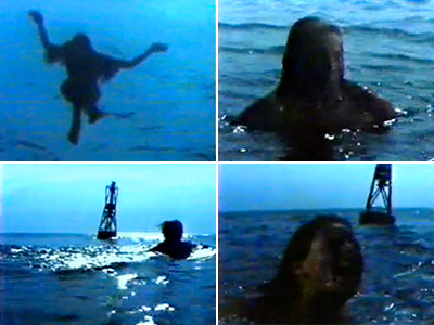 Jaws | JAWS Who knew four bars of music could instill such paralyzing fear? It's one of the scariest 60 seconds in cinematic history and pretty much…