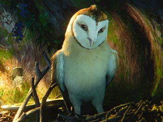 OWL CITY The feathered hero of Legend of the Guardians: The Owls of Ga'Hoole