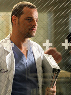Greys Anatomy Carev