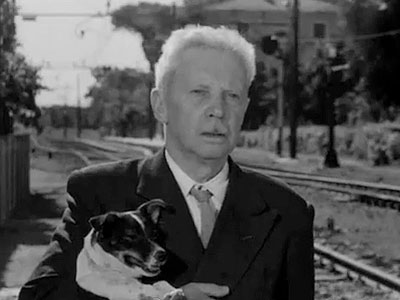 Who says European art films can't exploit an adorable dog for a tearjerker finale? Of course, it helps if the preceding hour and a half…