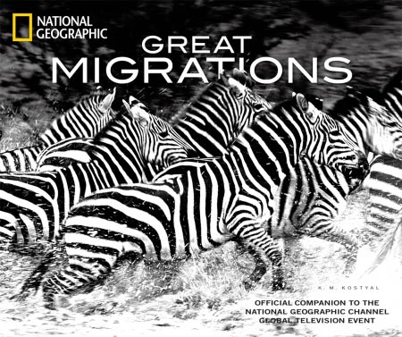 K.M. Kostyal, National Geographic, $23.10 In the official companion to the fall TV special, zebras throng the East African plains, sharks slice through the waters…
