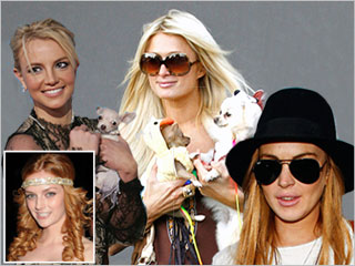 Spears-Hilton-Lohan-dogs