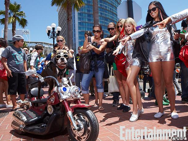Chopper the Biker Dog with fans
