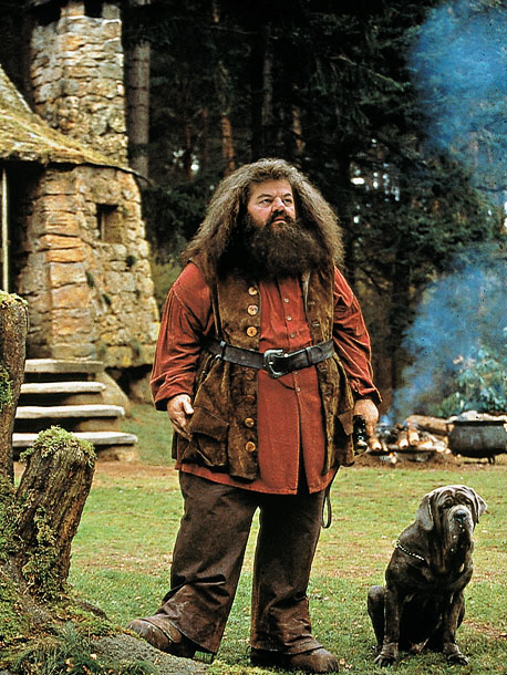 Robbie Coltrane, Harry Potter and the Sorcerer's Stone   ''I've always played bad people or funny people. I've never really played such a nice person in my life, certainly not for 10 years. So…