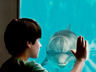 AGAINST ALL ODDS Nathan Gamble and Winter in Dolphin Tale