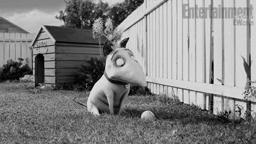 Tim Burton Re Animates Frankenweenie First Look Ew Com