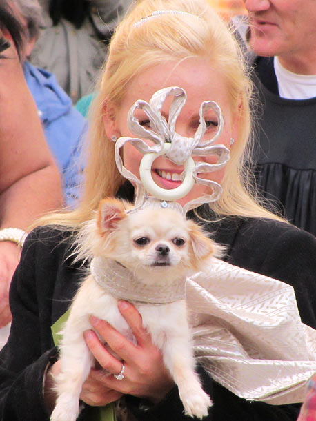 Come to think of it, that Philip Treacy hat really did seem more like a chew toy.