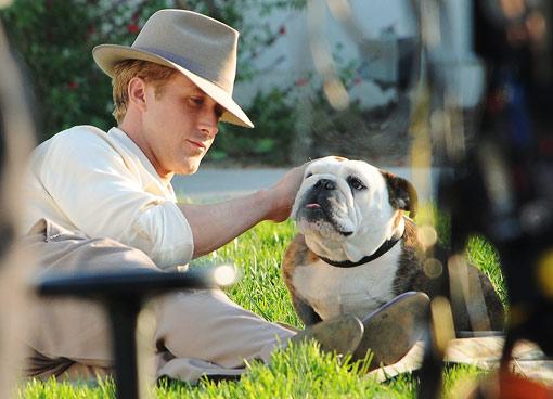 Ryan Gosling Dog
