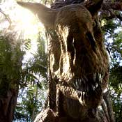 Terra Nova Dino
