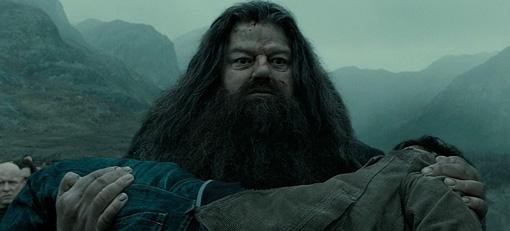 Hagrid Potter