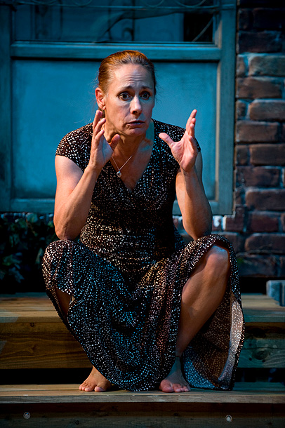 Laurie Metcalf | We're Excited About: Pulitzer Prize finalist Lisa D'Amour's backyard-set comedy about life gone awry in suburbia was originally destined for Broadway after its Chicago run…