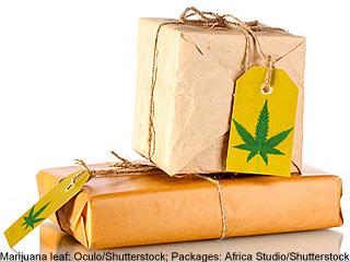 Marijuana Package 2