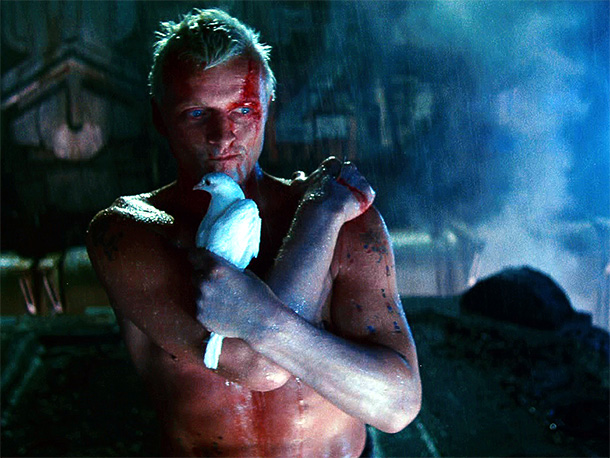 Blade Runner | An existential last gasp and perhaps the greatest death scene in cinema , replicant Roy Batty's final soliloquy is moving in both its humanity and…