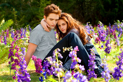 Breaking Dawn 2 Pattinson Stewart