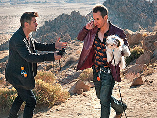 DOG DAYS Colin Farrell and Sam Rockwell steal a dog from a crime boss