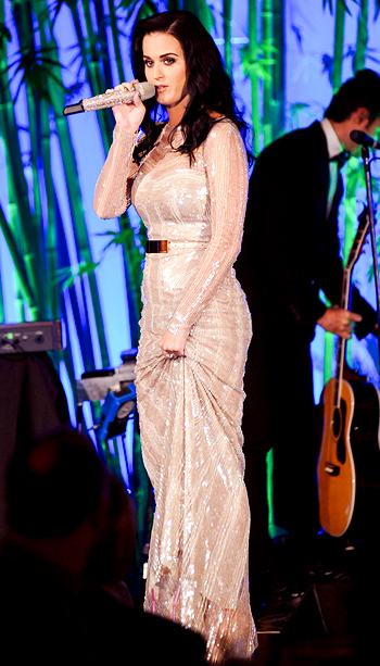 Katy Perry (in Elie Saab) at the 2012 Hammer Gala in Los Angeles
