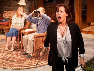 VANYA AND SONIA AND MASHA AND SPIKE Kristine Nielsen, David Hyde Pierce and Sigourney Weaver