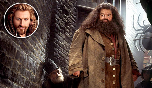 ''The guy from Harry Potter ... Hagrid (pictured). Ben Affleck's beard [in Argo ] was cool, too.''