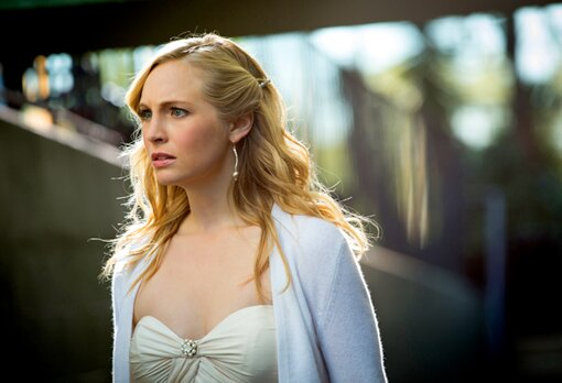 candice accola movies and tv shows