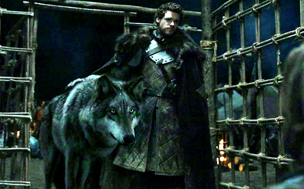 As seen in: Game of Thrones A newly declared king needs all the help he can get, having a mystical bond with a giant wolf…