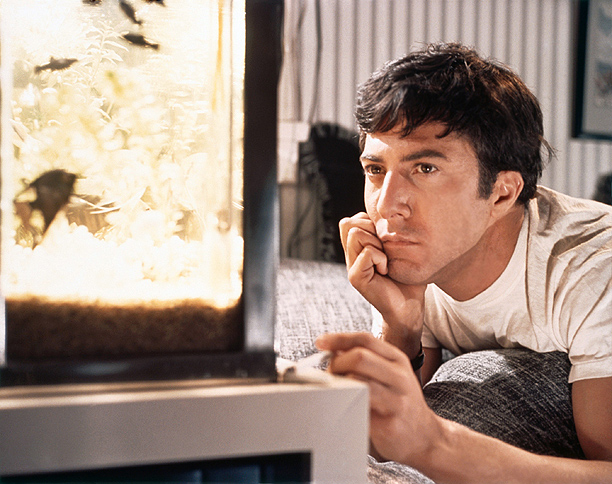 Nominated for: Best Actor for The Graduate in 1968 What got Oscar's attention? Hoffman's talent made the role of complex, drifting mother-in-law seducer Benjamin Braddock…