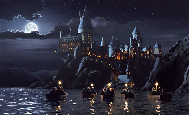 Harry Potter, Harry Potter and the Sorcerer's Stone | As seen in: The Harry Potter series Amenities: Join a castle that always has a new room or dungeon to explore. The Room of Requirement…